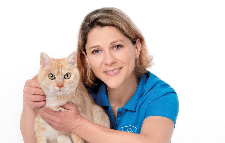 Eine Hightech-Diagnose für Ihr Tier