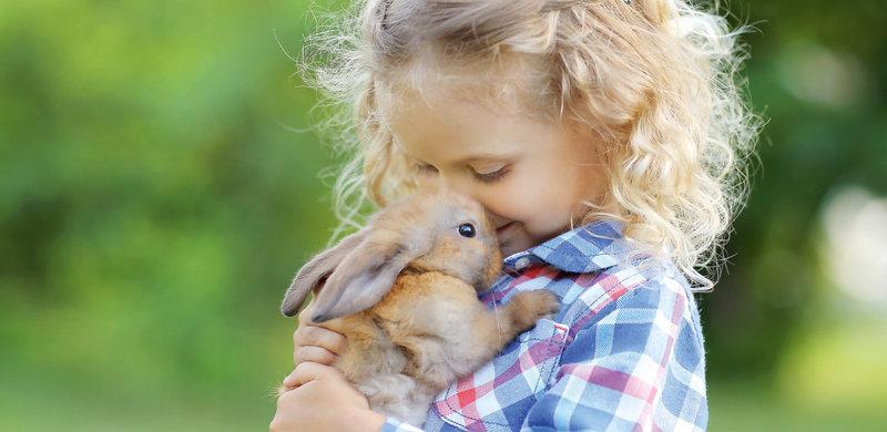 Für ein langes Kaninchenleben